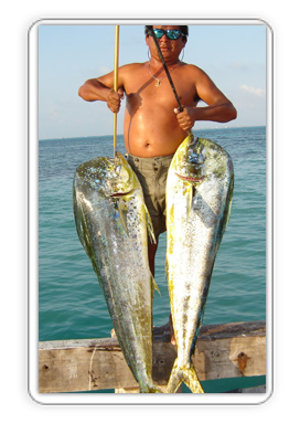 Private Cancun Deep Sea Fishing