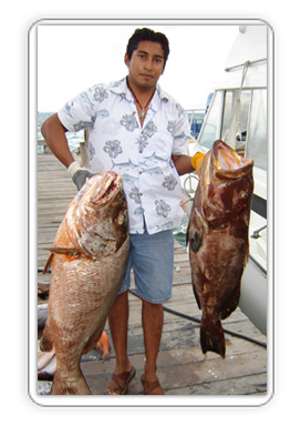 Cancun Bottom Fishing Charters